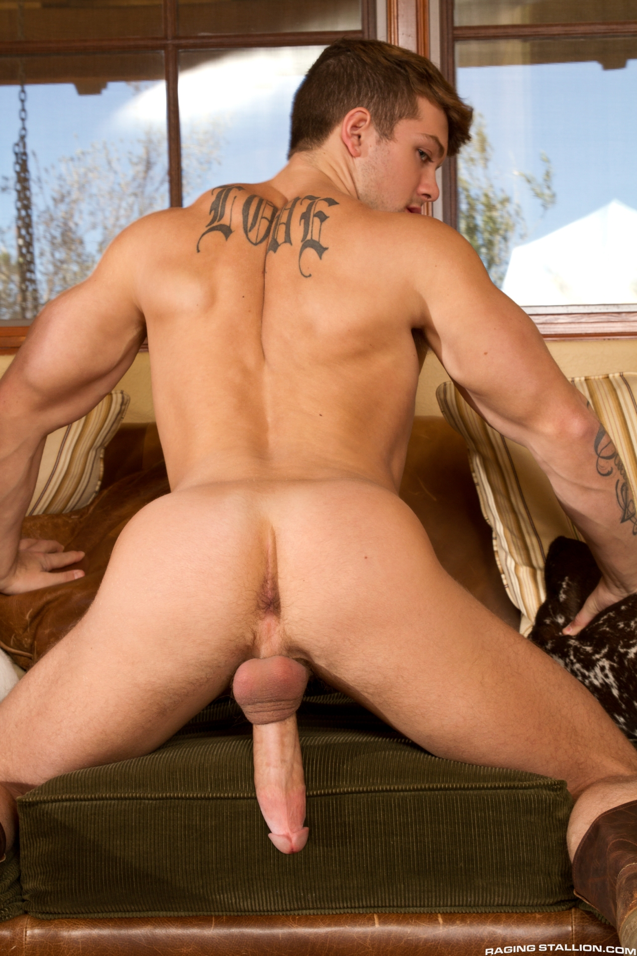 Sex Gay Chubby Men And Galleries Thongs Muscle Man Fucked In The Ass