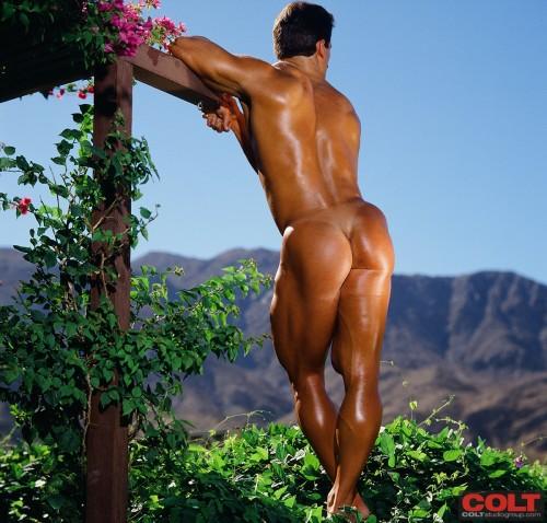 jockstrap-gym-bodybuilder-male-butt-underwear-naked-muscle-posing-strap-nude (6)